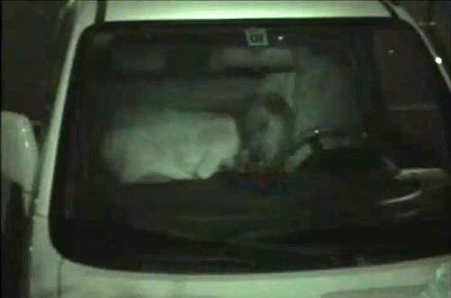 【 盗撮動画 】カーセックススポット駐車場に赤外線盗撮カメラを仕掛けた結果…※動画アリ