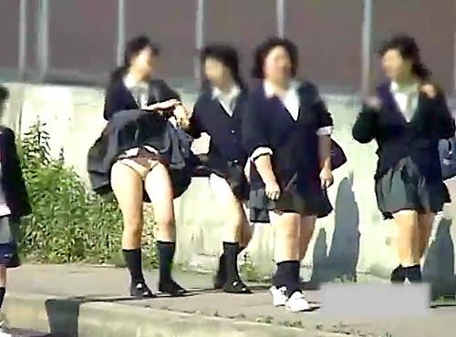 【盗撮動画】とある学校の通学路は神風スポットJKパンチラ盗撮し放題だったwwwww