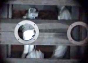 【 盗撮動画 】深夜の公園遊具で野外SEXする発情バカップルを赤外線盗撮したガチンコ映像!!!